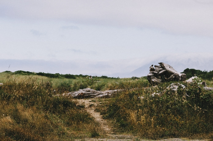 oregon-coast-cliff-wedding-0009