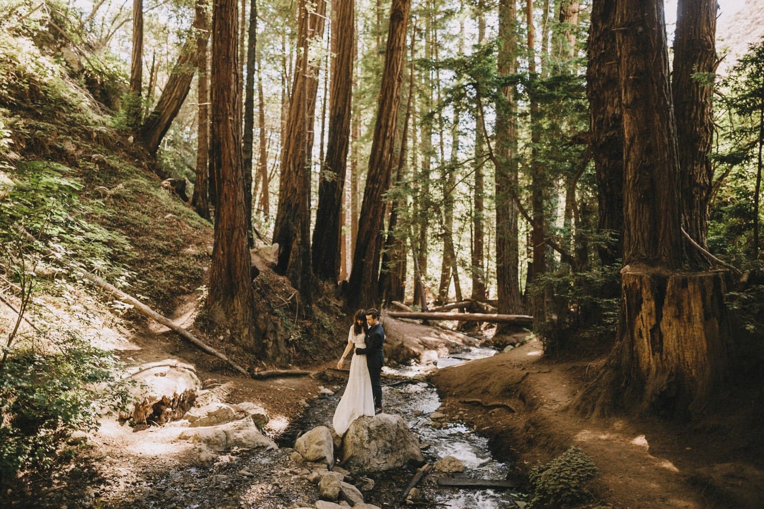 elopement in the redwoods of big sur