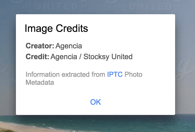 google image search copyright info display