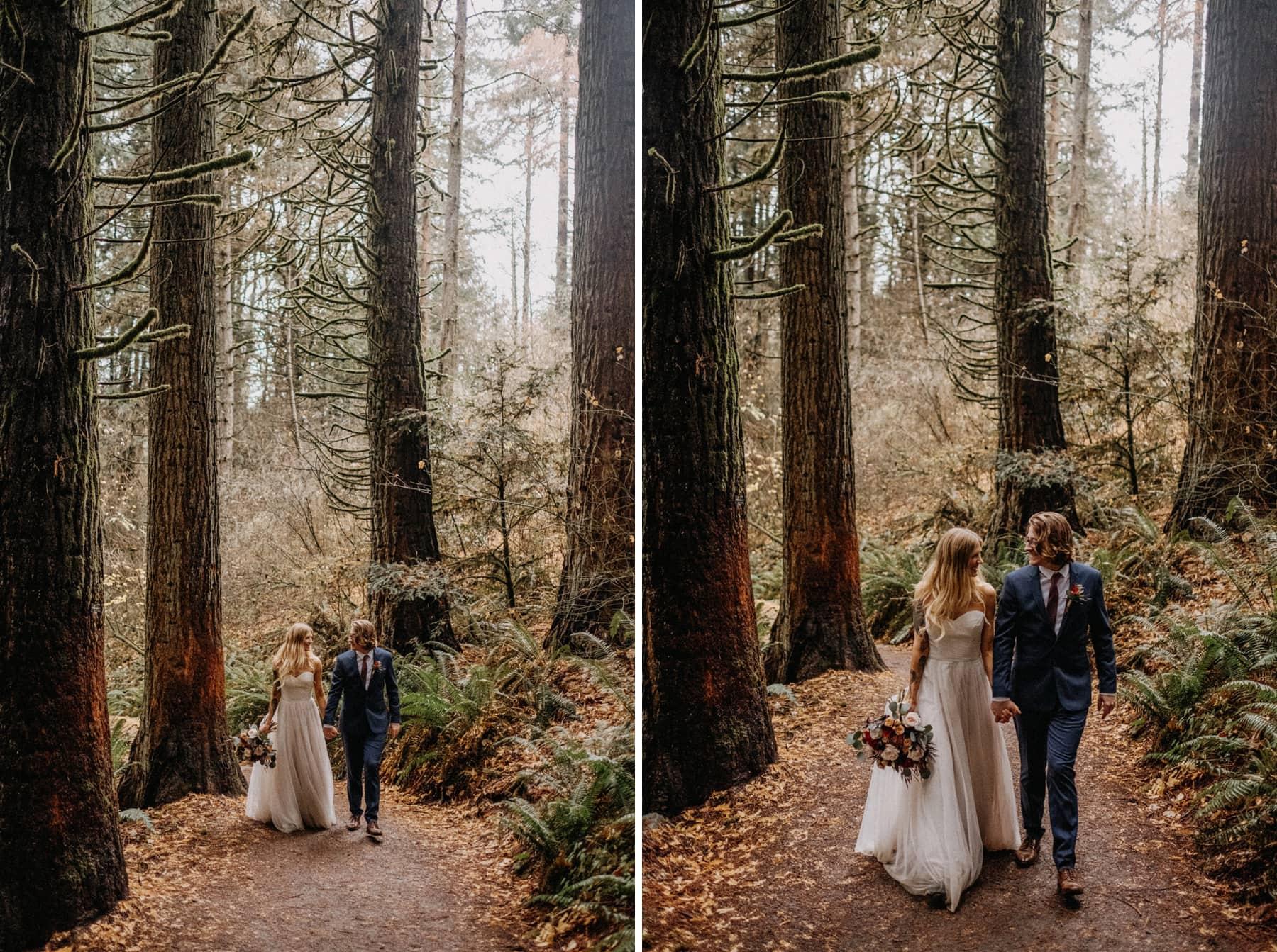 redwood trees in portland oregon